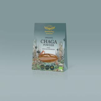 chaga mushroom wildcrafted chaga mushroom powder